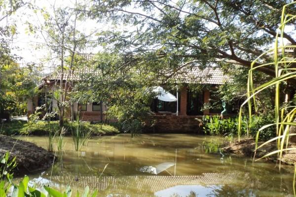 Kinkala Deluxe Garden Apartment  1