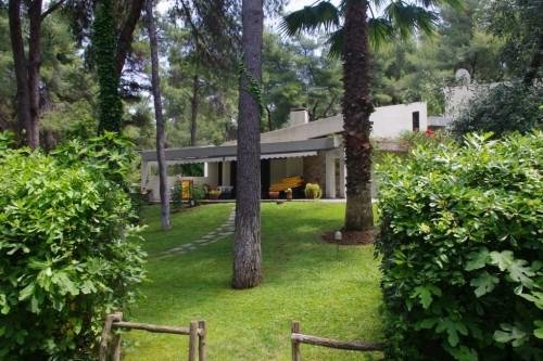 Sani Villa