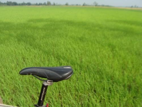 Hanoi - Ho Chi Minh Discovery By Bike ( 10 Days Trip)