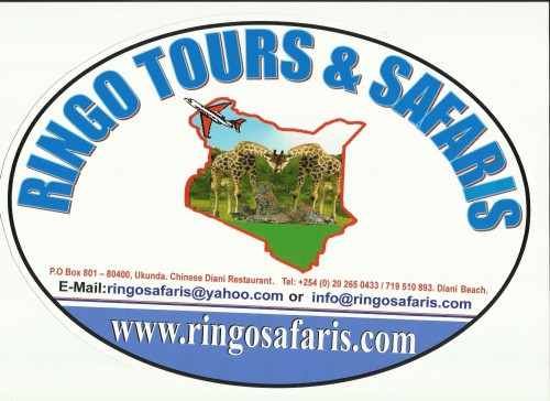 Ringo Tours & Safaris