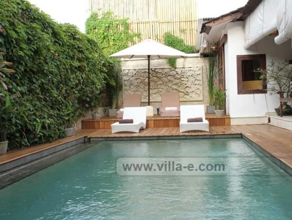 Villa-e