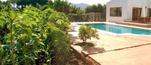 Dereköy Guest Villa