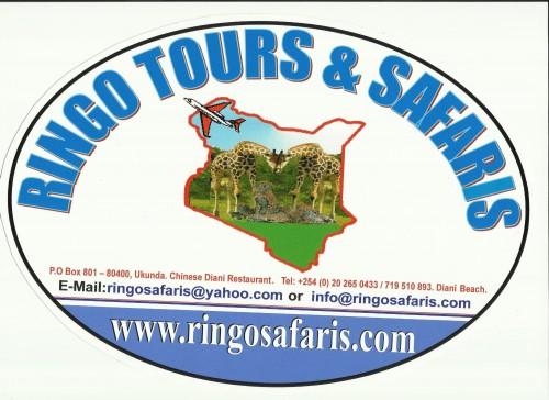 Ringo Tours & Safaris